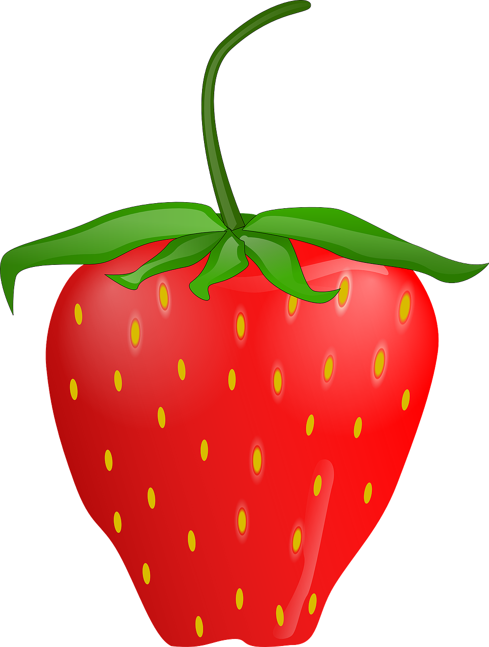 strawberry fruit berry free photo