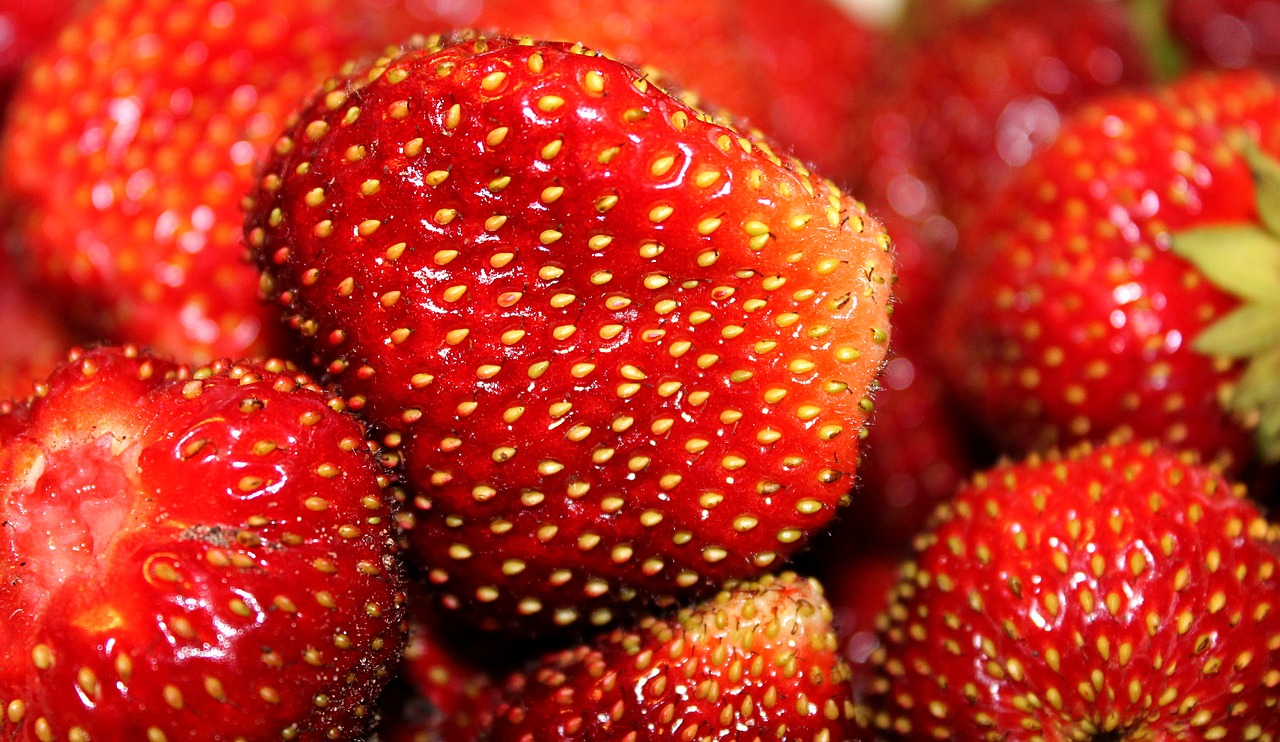 Strawberryseedsberryripered Free Photo From Royalty Image Of Background Red Circuit Board Close Up Strawberryseedsberryriperedfoodvitaminsnutrition