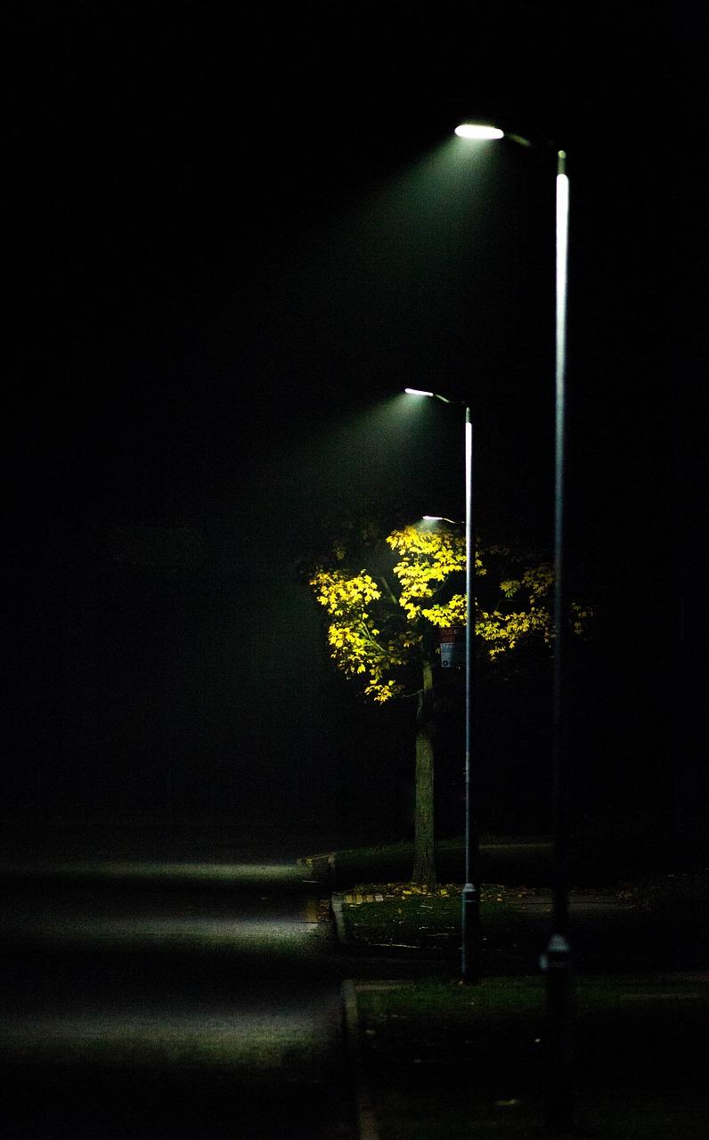 STREETLIGHT MIST ROAD LIGHT SCENE AUTUMN FREE PHOTO