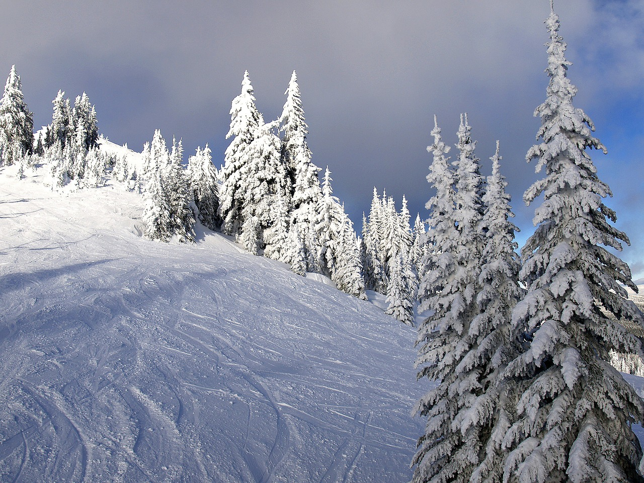 sunpeaks kamloops british columbia free photo