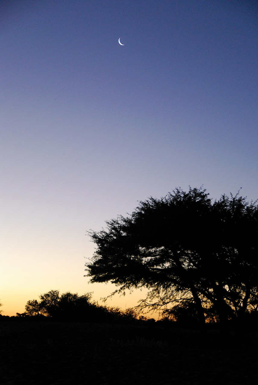 sunset kalahari moon free photo