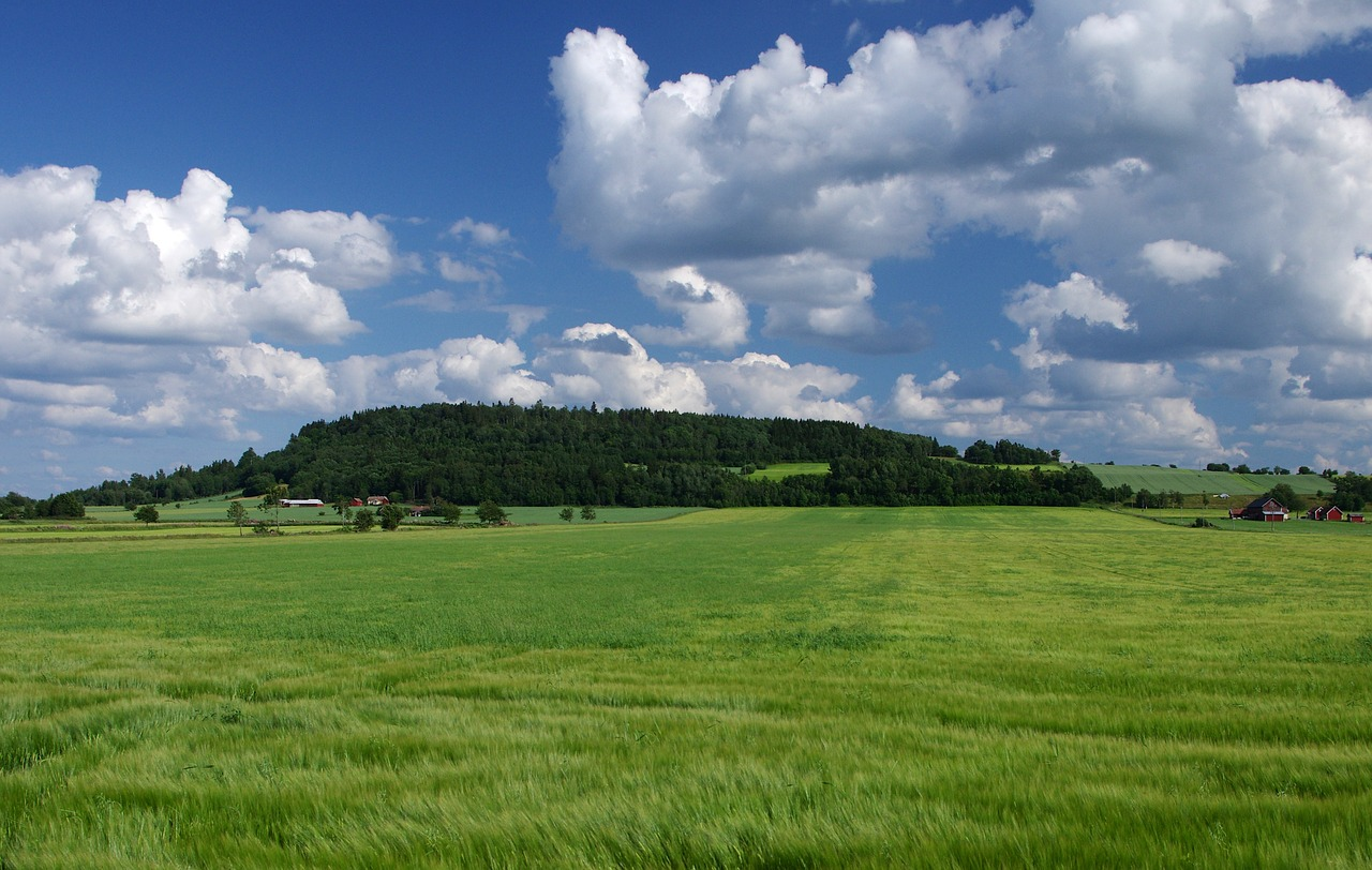 sweden landscape scenic free photo