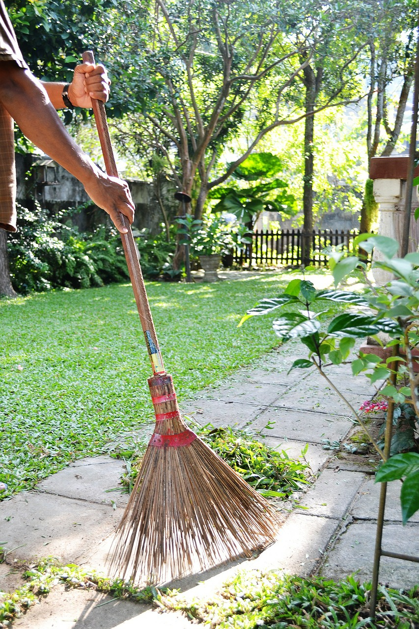 sweep clean garden free photo