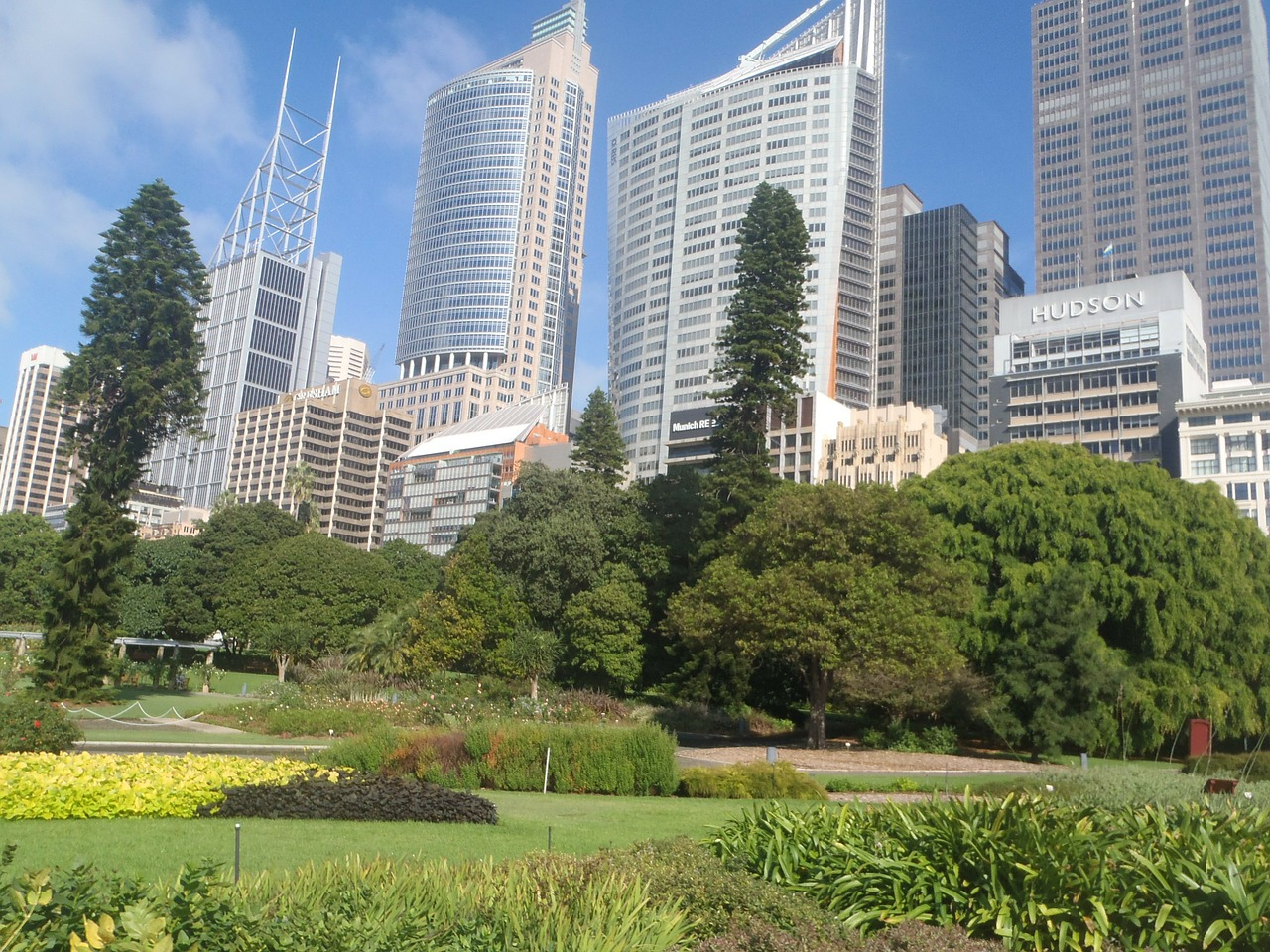 sydney australia cities free photo