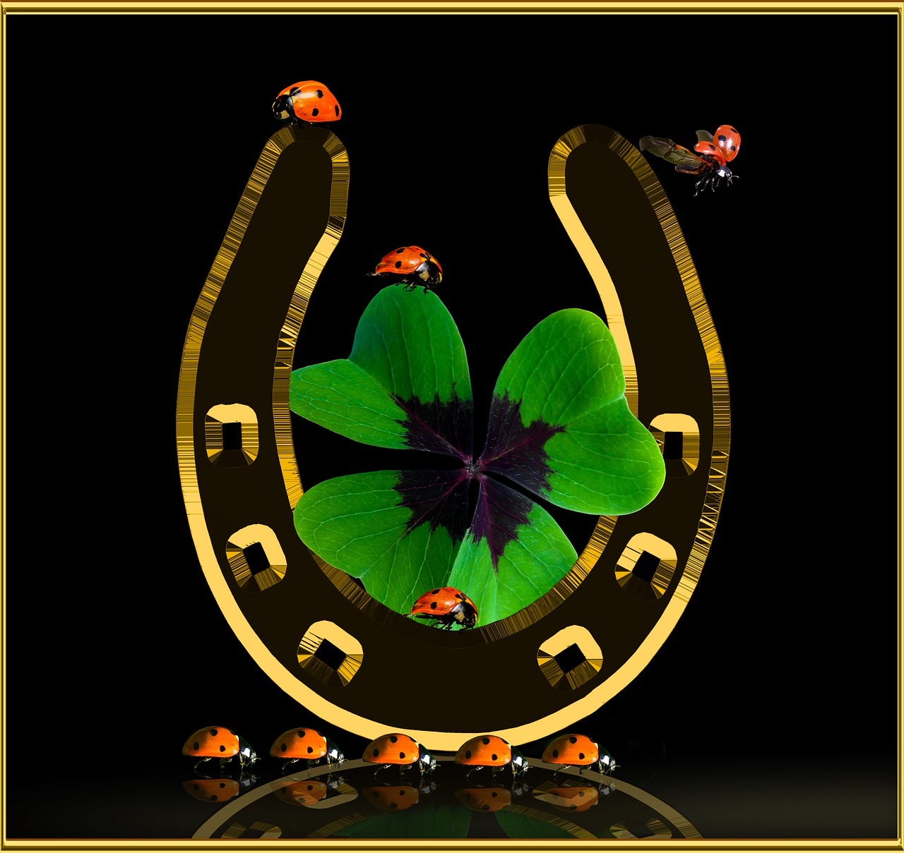 symbol luck lucky clover free photo