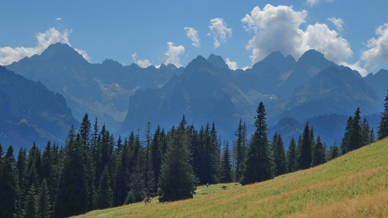 tatry  mountains  rusinowa logs free photo