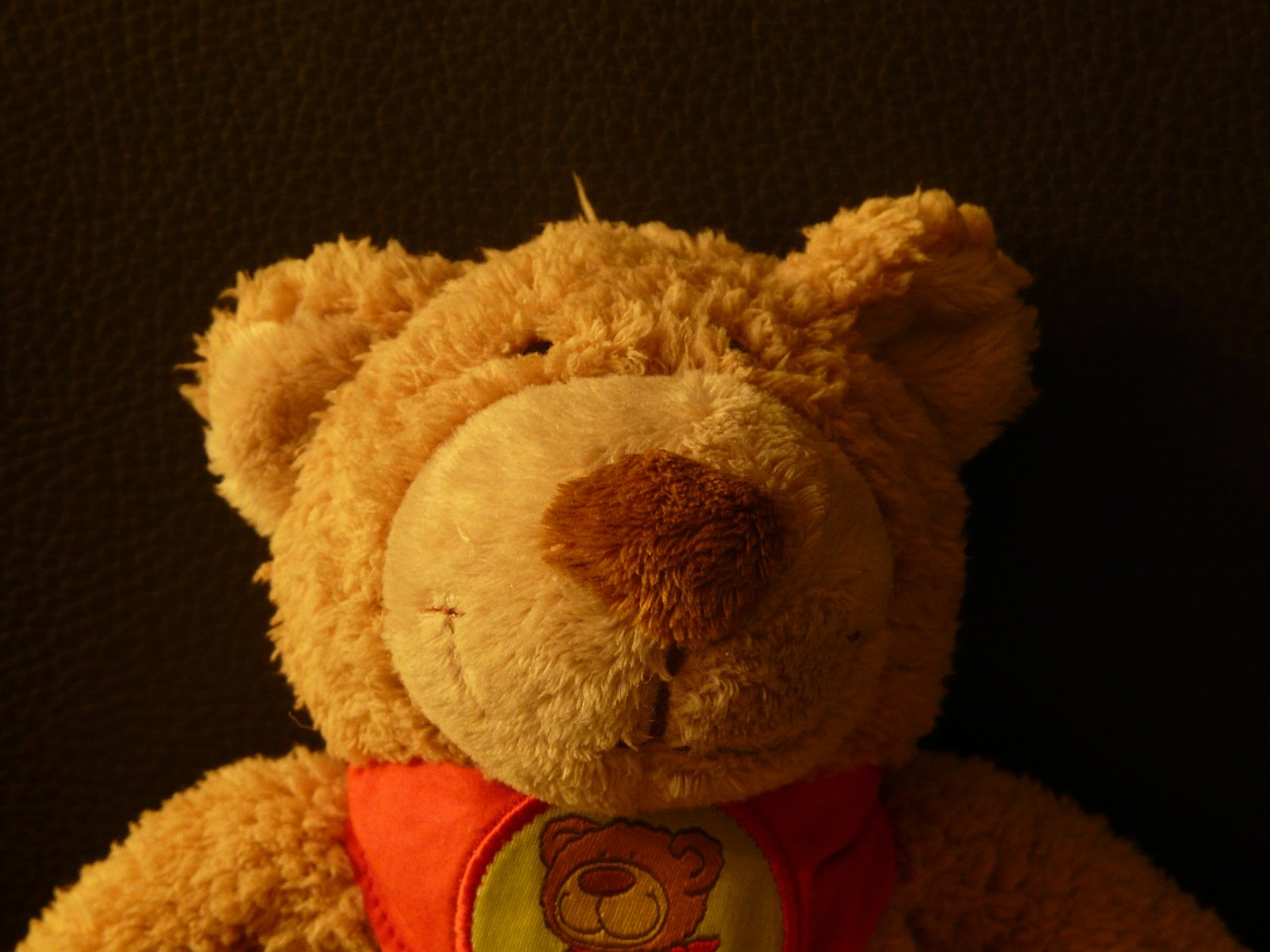 teddy bear soft fluffy free photo