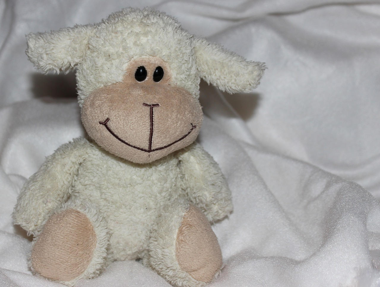 teddy bear soft soft toy free photo