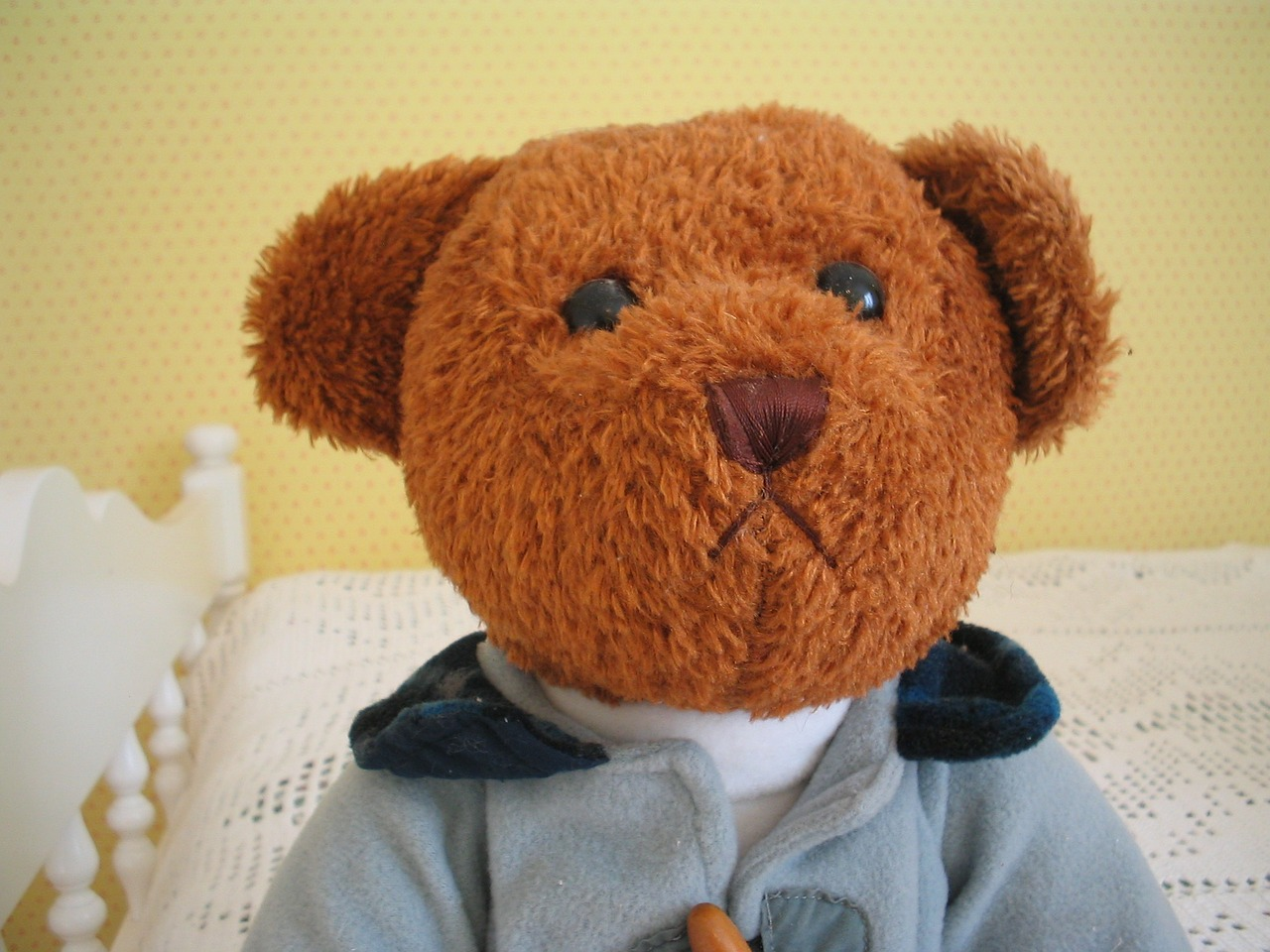 teddy bear brown clothing free photo