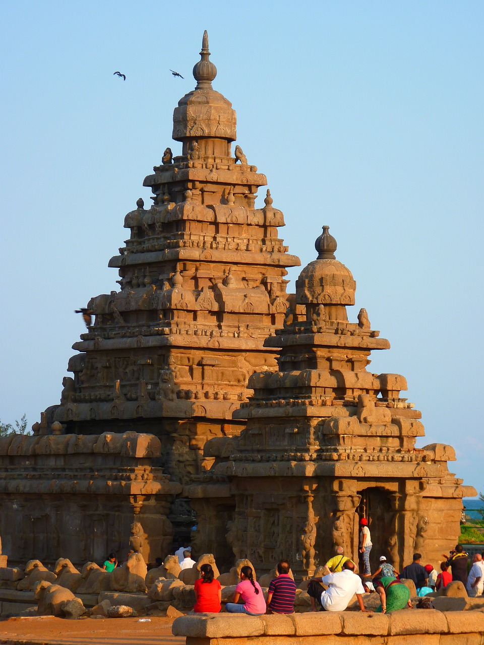 temple,sea shore temple,granite,stone,mahabalipuram,mamallapuram,india,free pictures, free photos, free images, royalty free, free illustrations, public domain