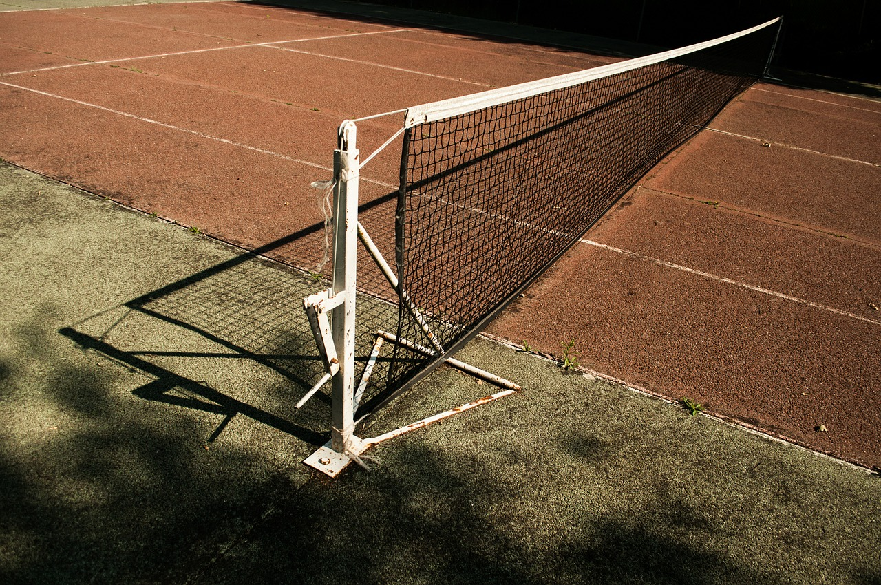 tennis,tennis court,set,sport,court,racket,net,exercise,clay,sports,free pictures, free photos, free images, royalty free, free illustrations, public domain