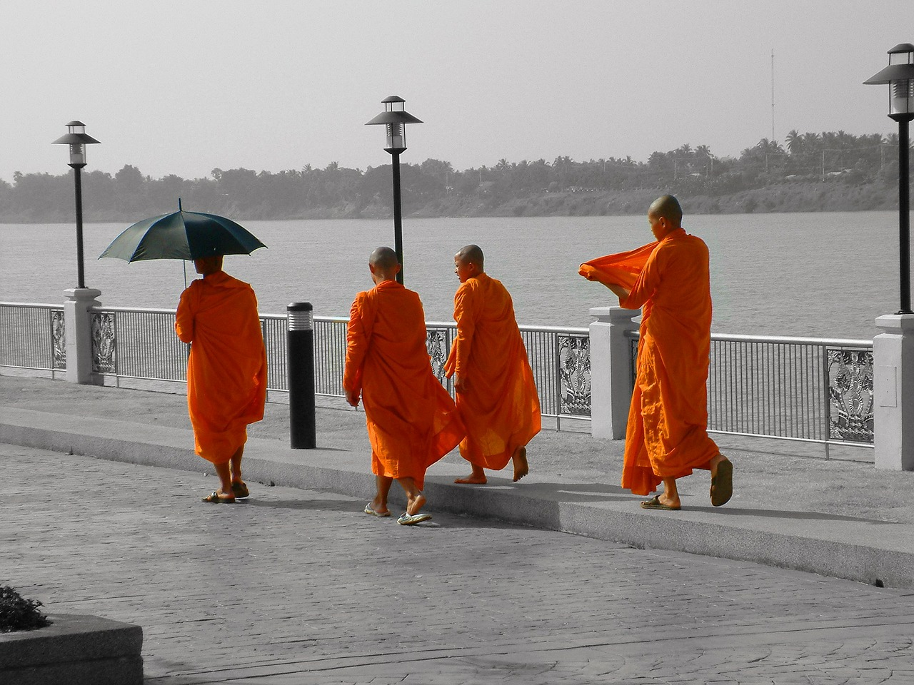thailand monk buddhism free photo