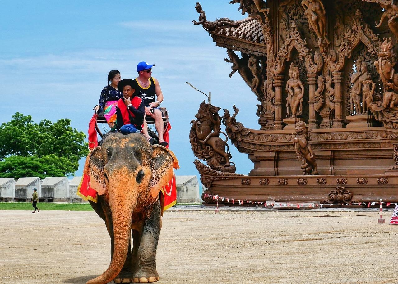 Thailand, travel, elephant, temple, sanctuary or truth