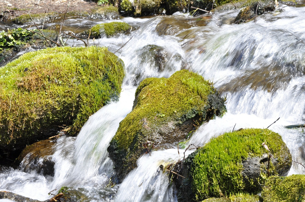the flow of the river natural upstream free photo