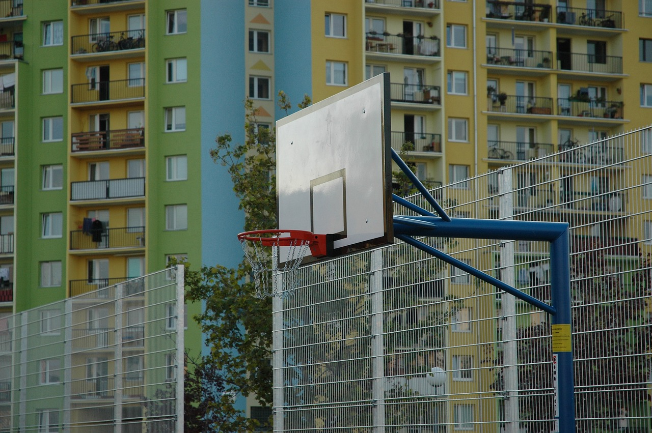 the pitch basketball basket free photo