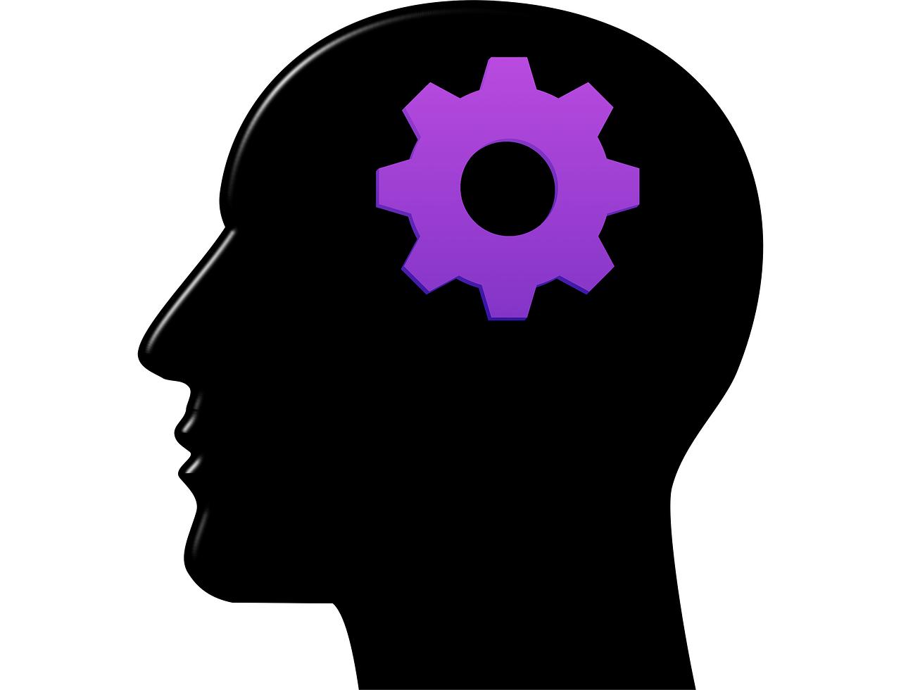 view сетевые сообщества и обучение