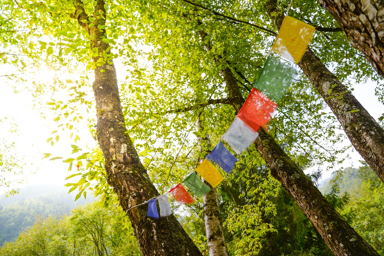 tibet  flags  buddhism free photo