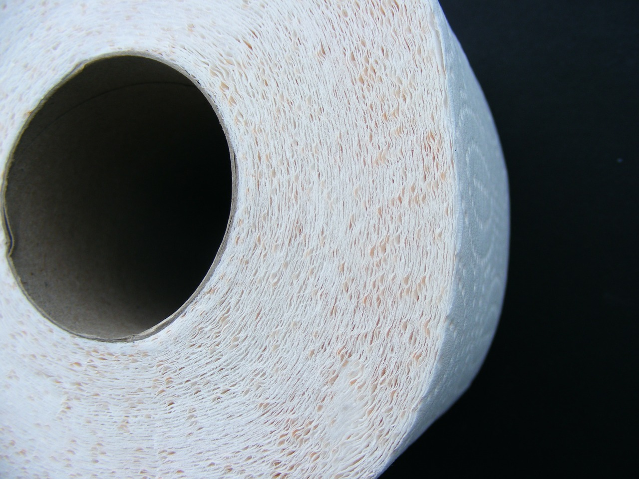toilet paper,toilet,paper,bathroom,hygiene,roll,clean,sanitary,tissue,restroom,lavatory,wipe,soft,home,household,hygienic,toiletries,free pictures, free photos, free images, royalty free, free illustrations, public domain