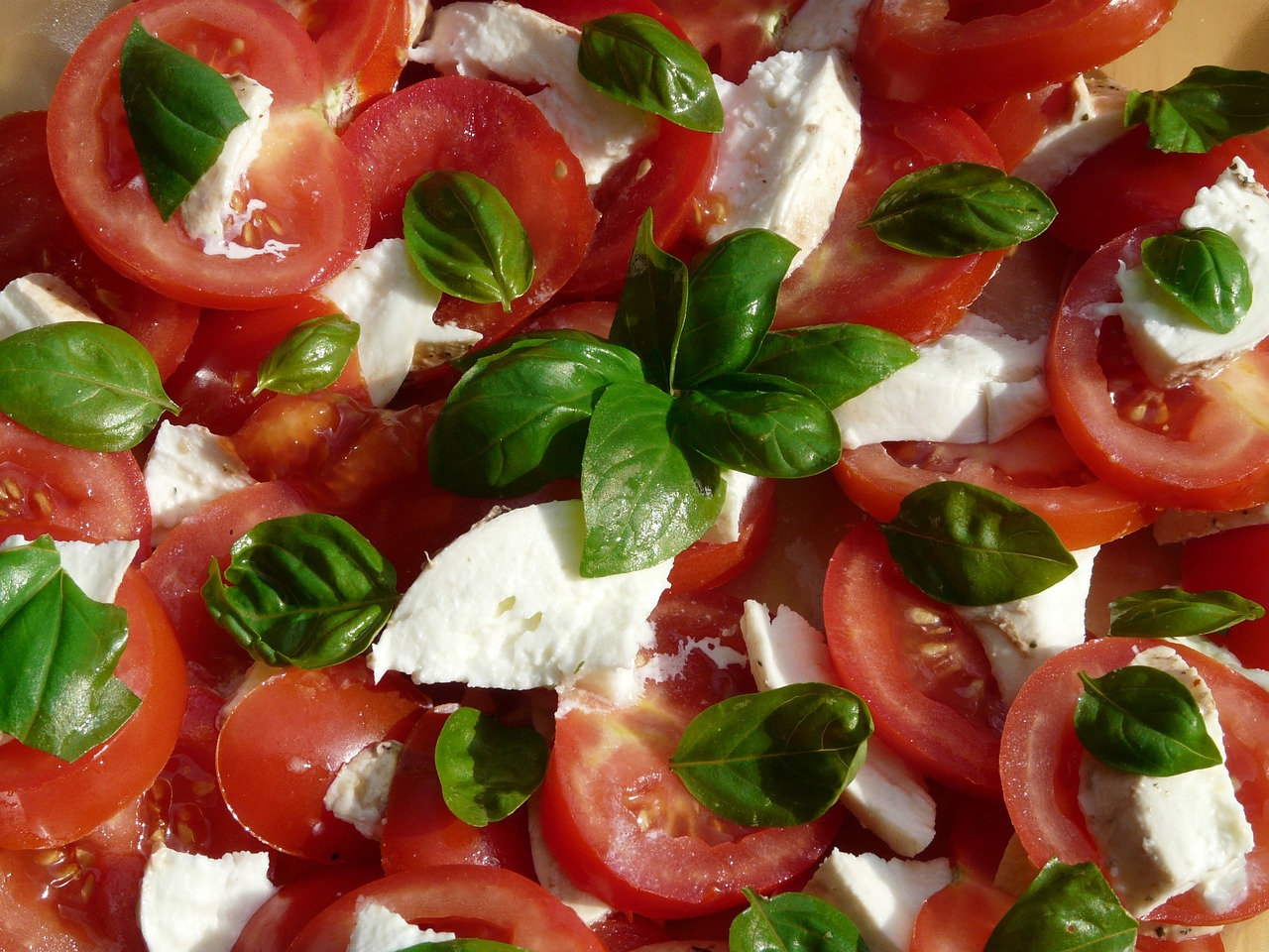 tomato and mozzarella salad basil tomatoes free photo