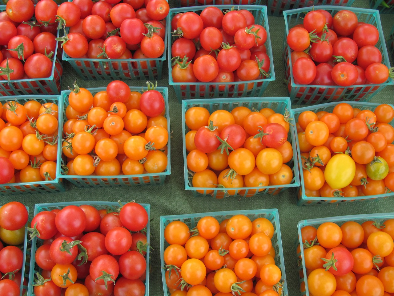 tomatoes farmers market healthy free photo