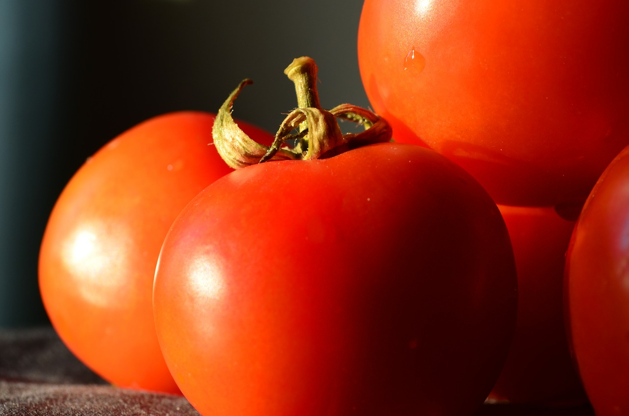tomatoes vegetables food free photo