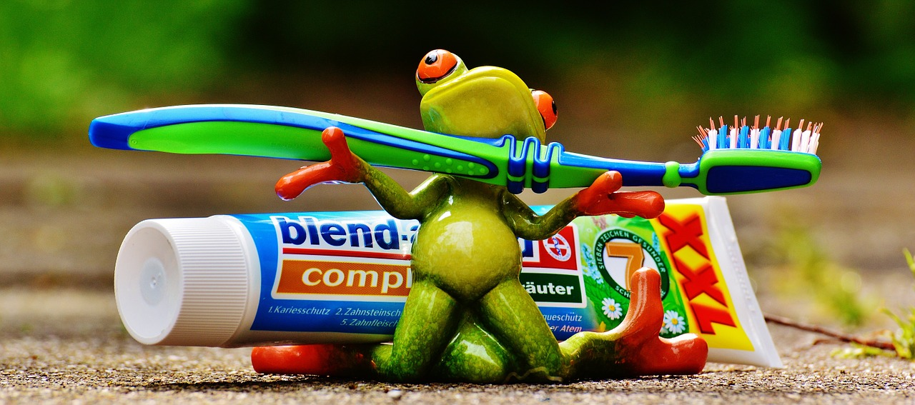 toothpaste frog toothbrush free photo