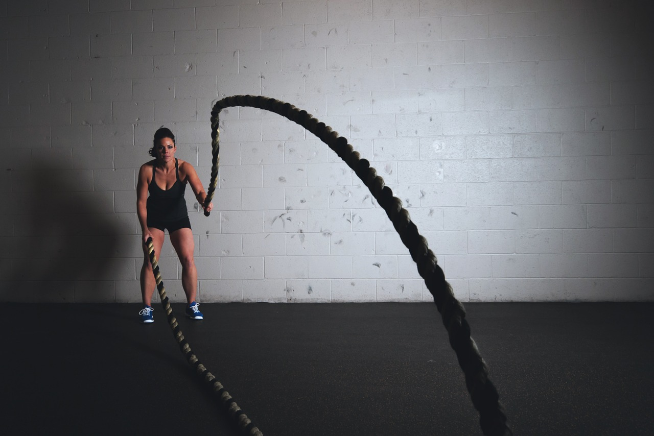 training ropes workout free picture