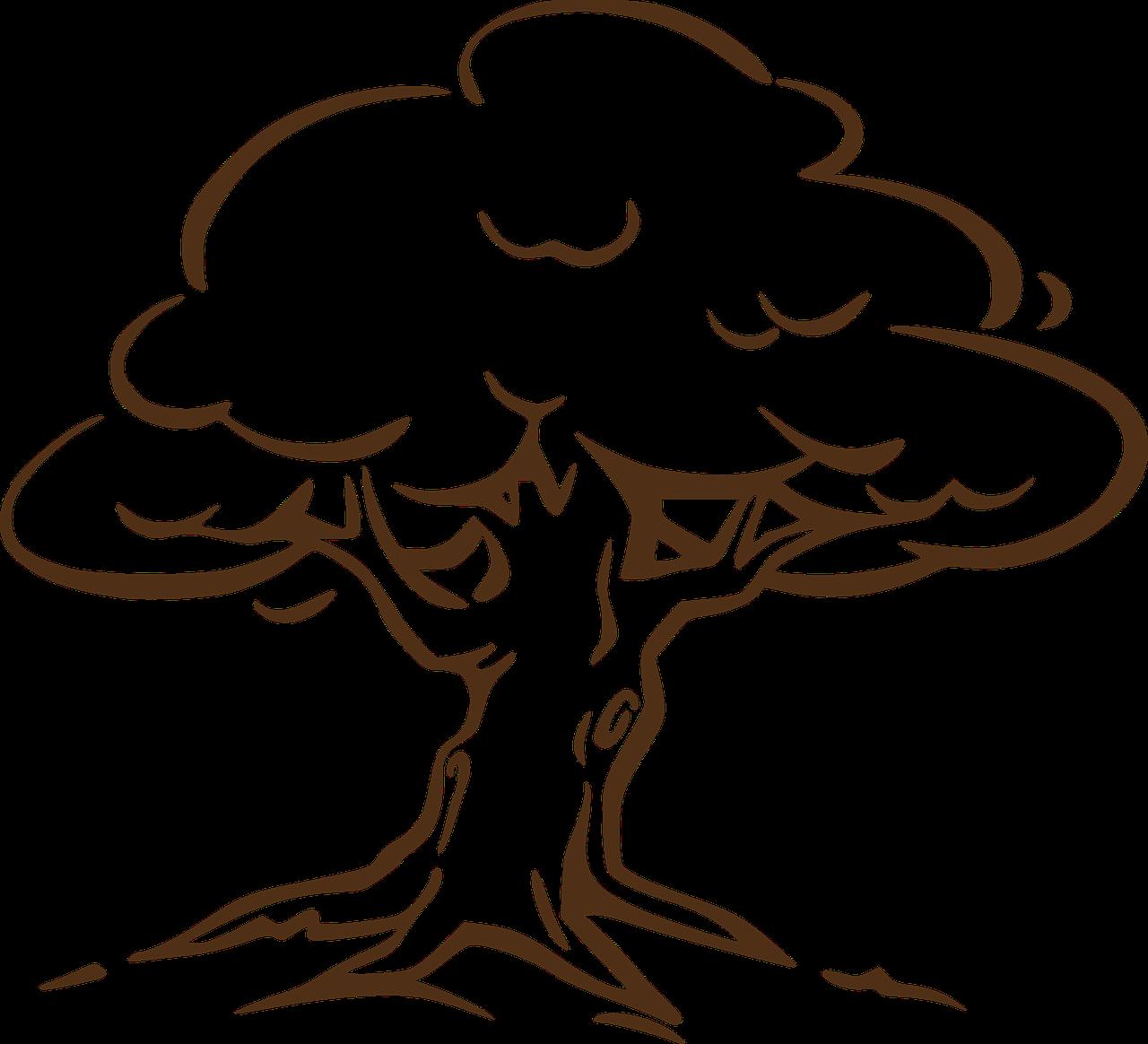 Tree,oak,wind,leaves,roots - free image from needpix.com