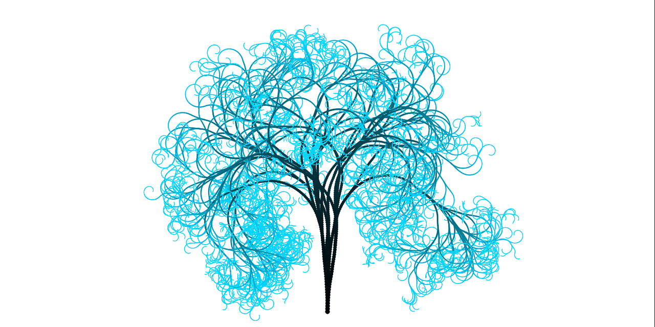 tree branches light blue free picture