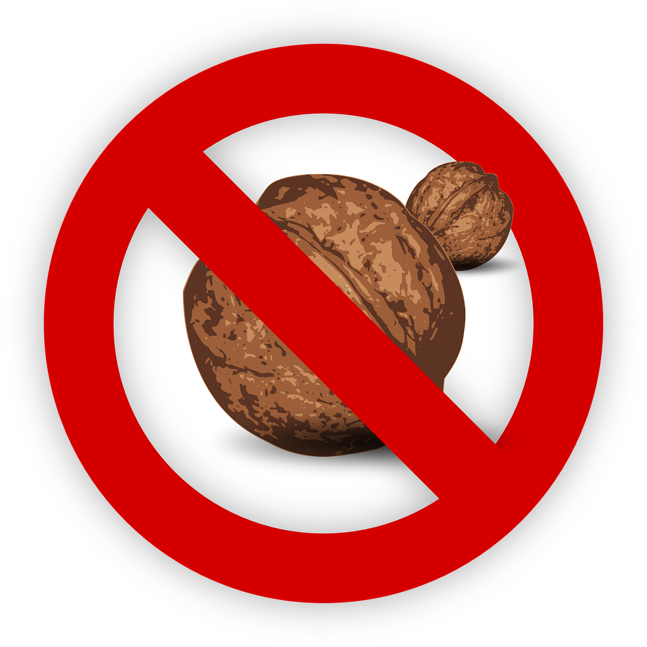 tree nut allergy food free photo