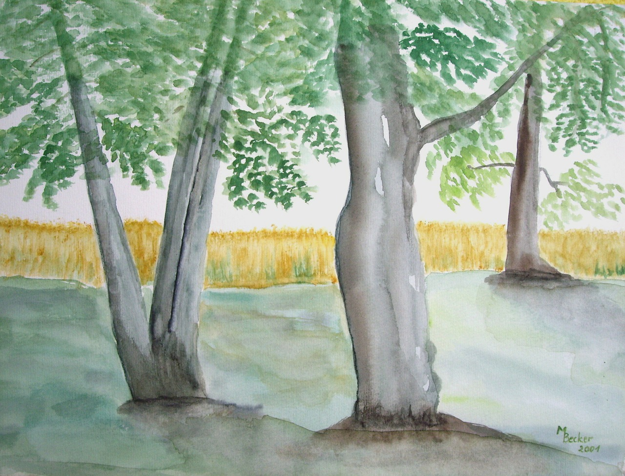 trees forest painting free photo