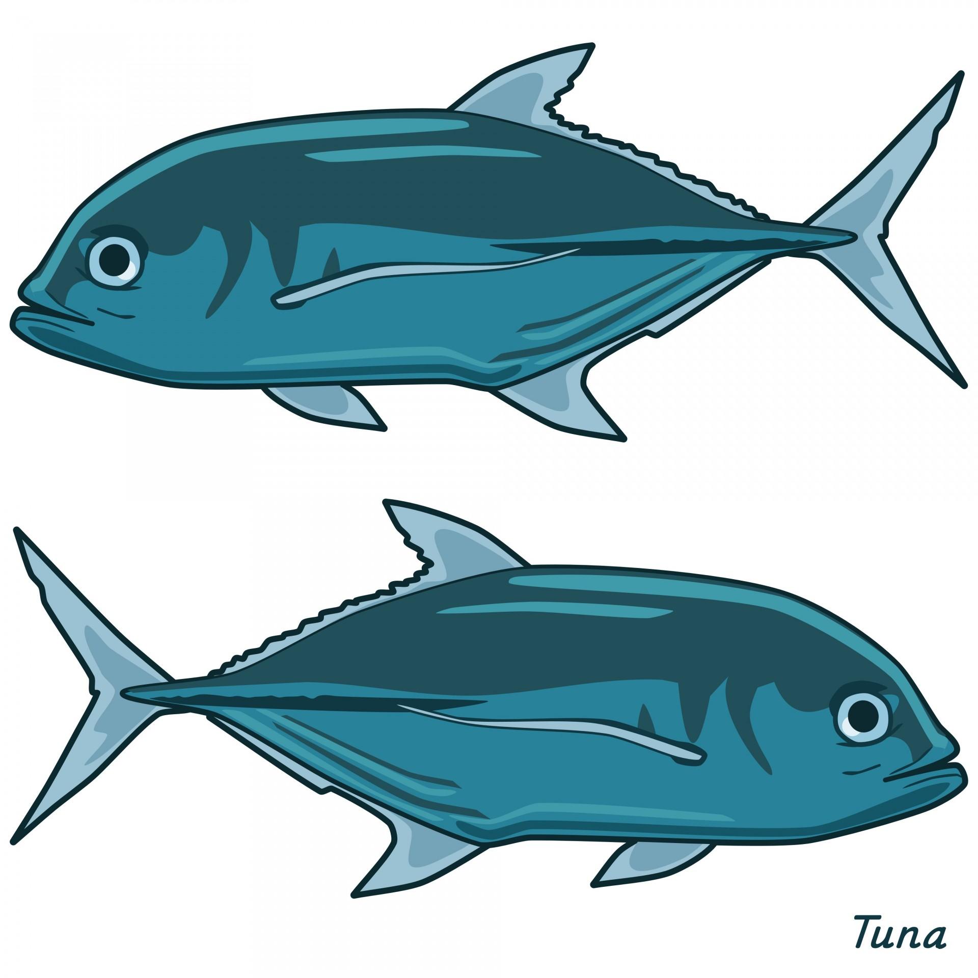 Fish tuna. Clipart clip art animal