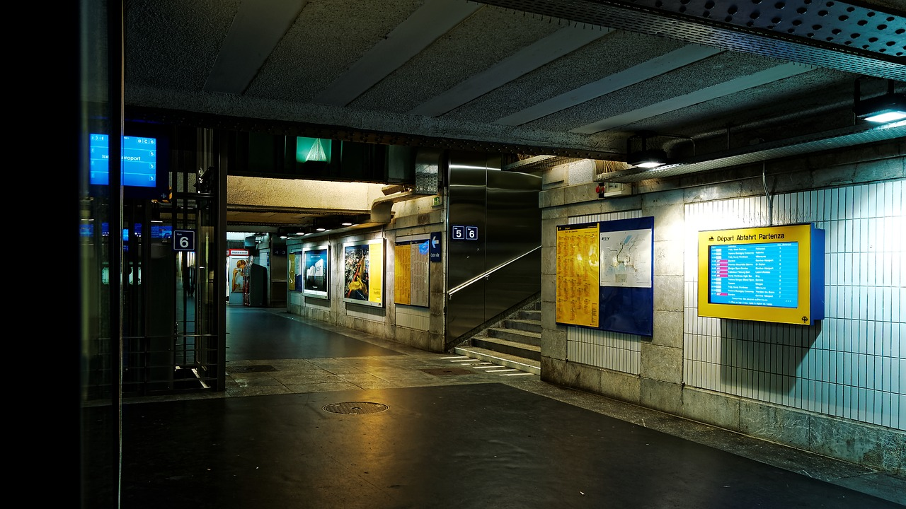 underpass,railway station,lausanne,sbb,switzerland,night,pedestrian,wall tiling,neon lighting,underground,railway station area,central station,free pictures, free photos, free images, royalty free, free illustrations, public domain