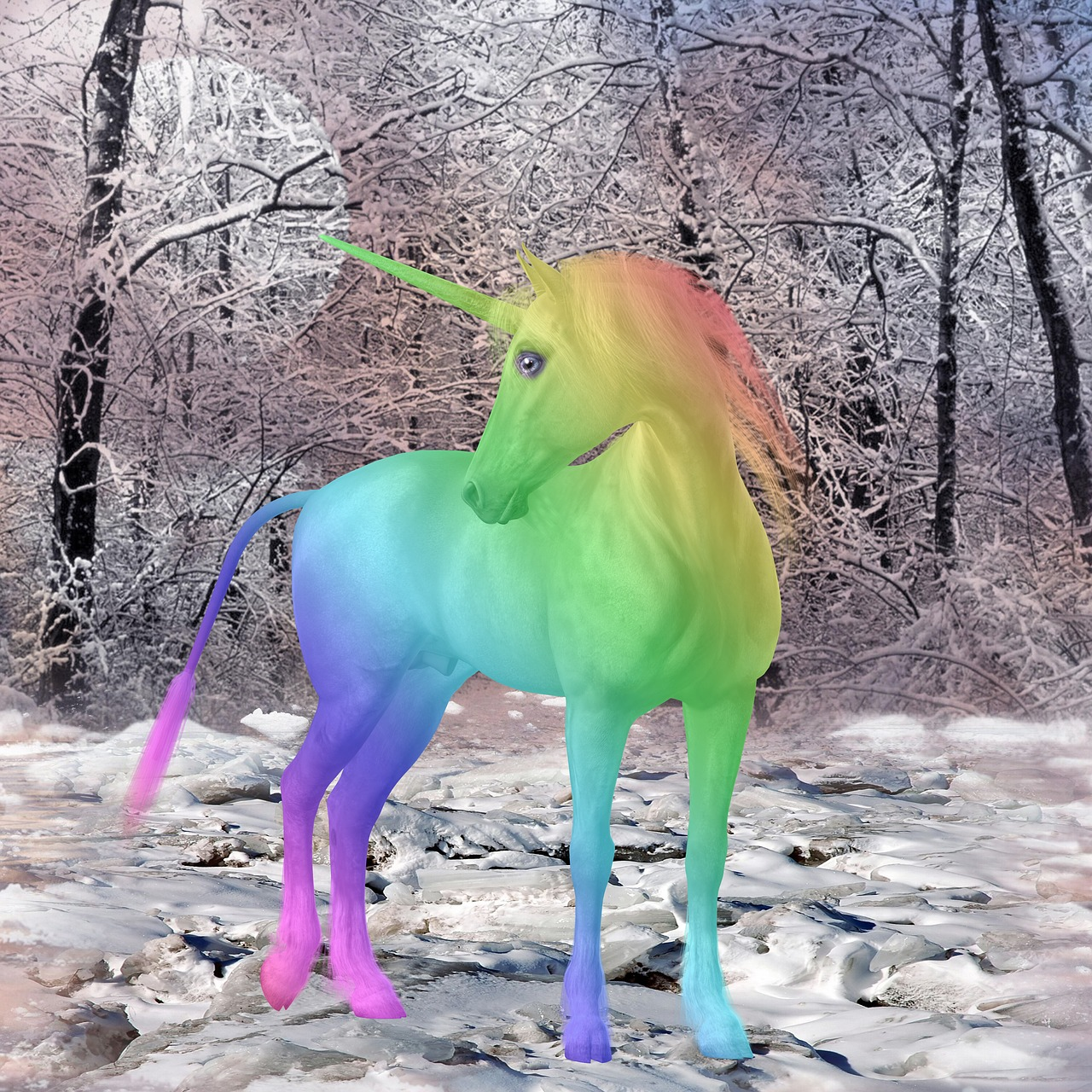 unicorn mythical creatures colorful free photo