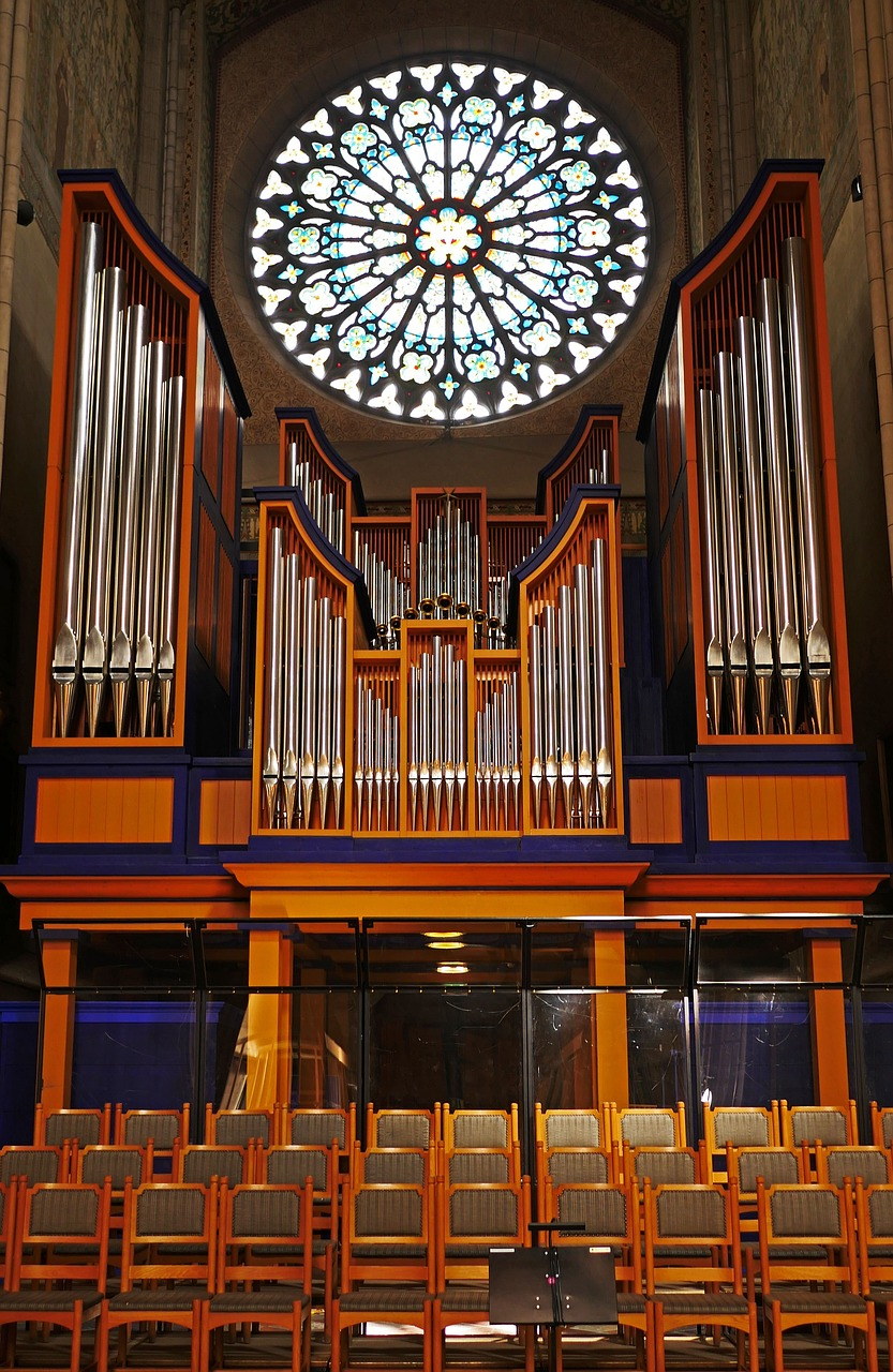 uppsala cathedral,organ,rosette,choir stalls,aisle,bishop church,gothic,church window,historically,places of interest,sweden,whistle,organ whistle,symmetrical,strictly,puritan,free pictures, free photos, free images, royalty free, free illustrations, public domain