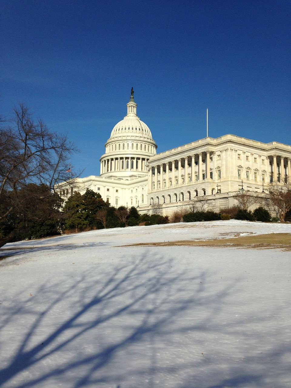 us capitol capitol winter free photo