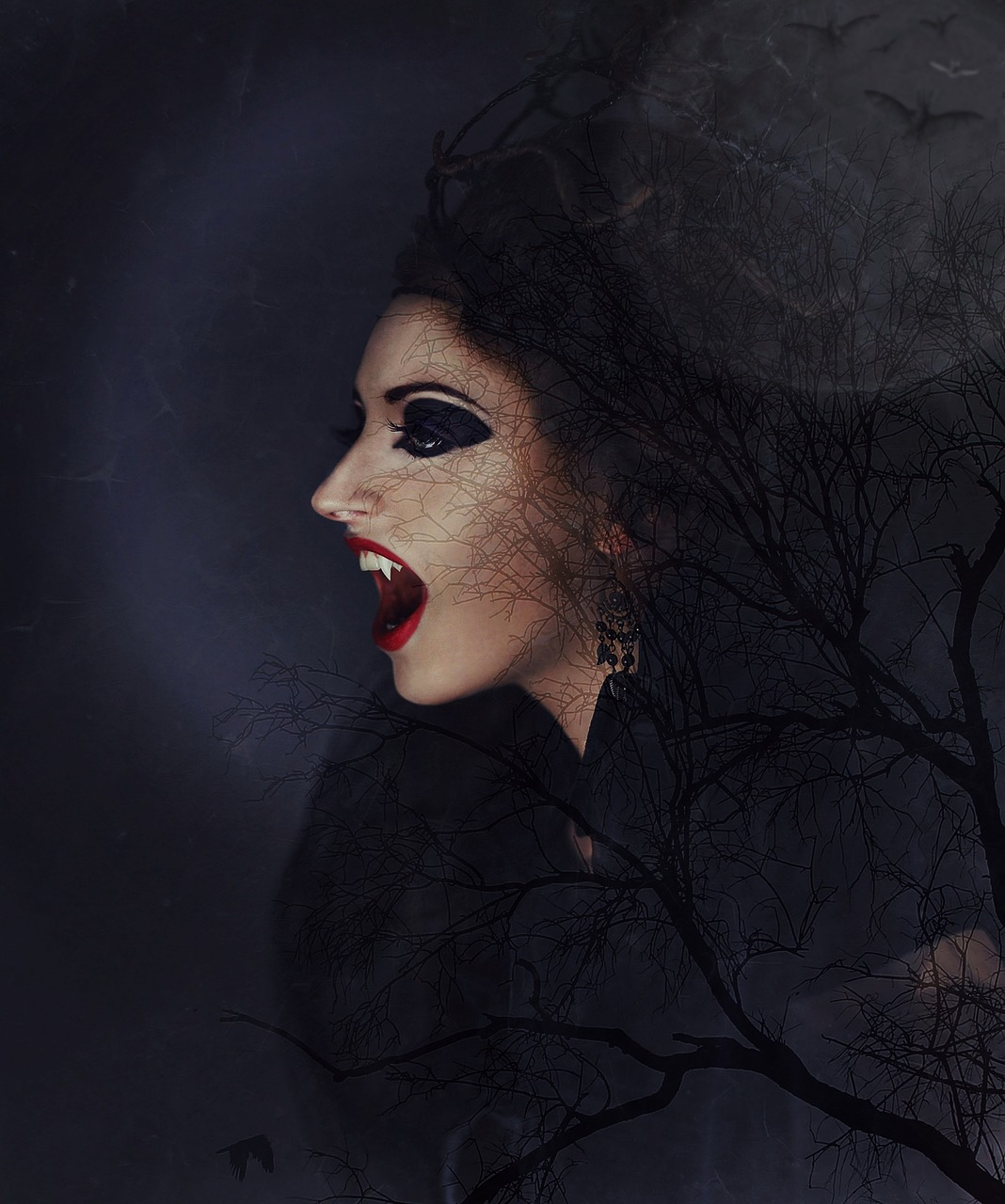 vampire vampire woman vampire lady free photo