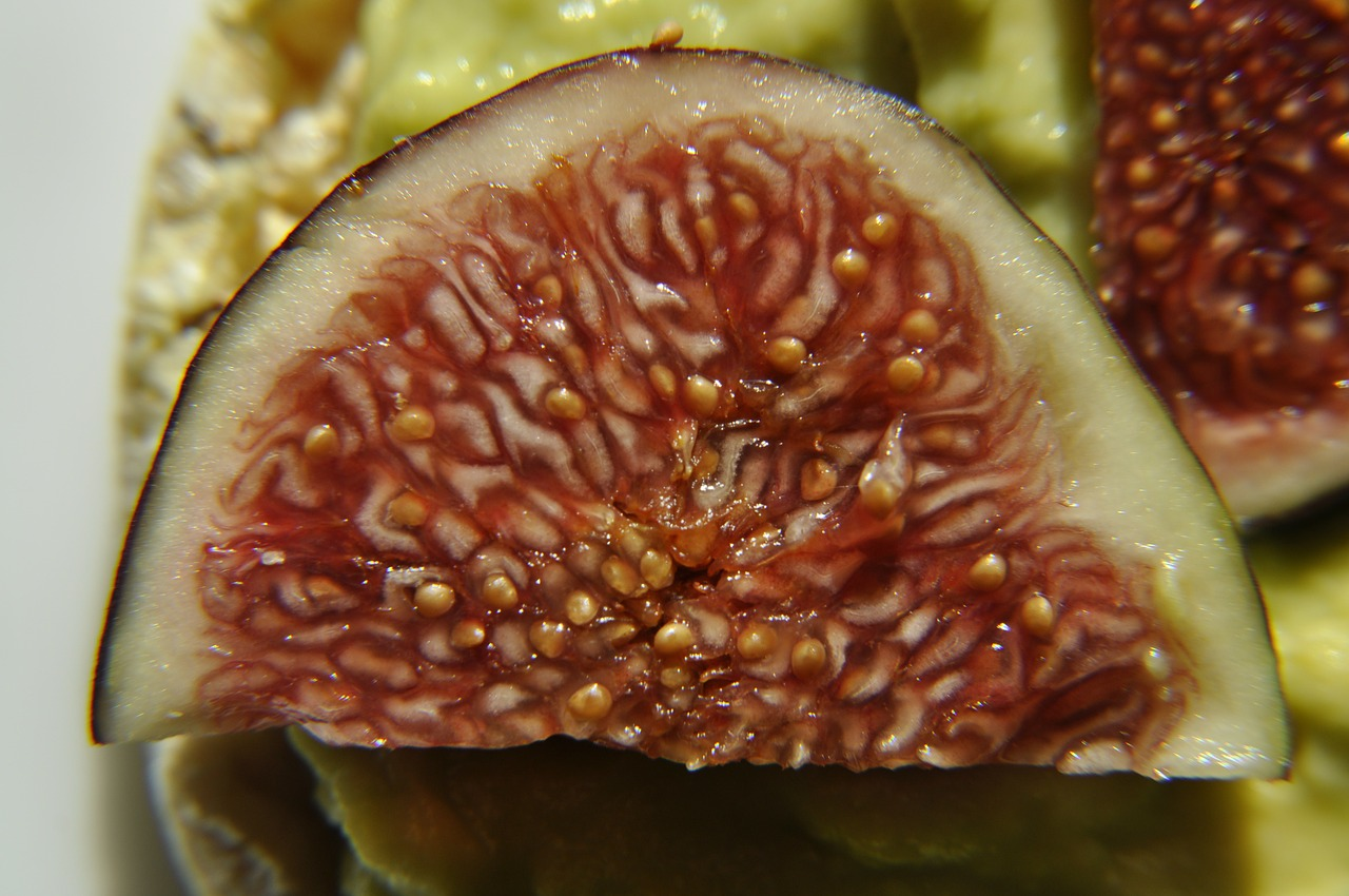 vegan fig healthy free photo