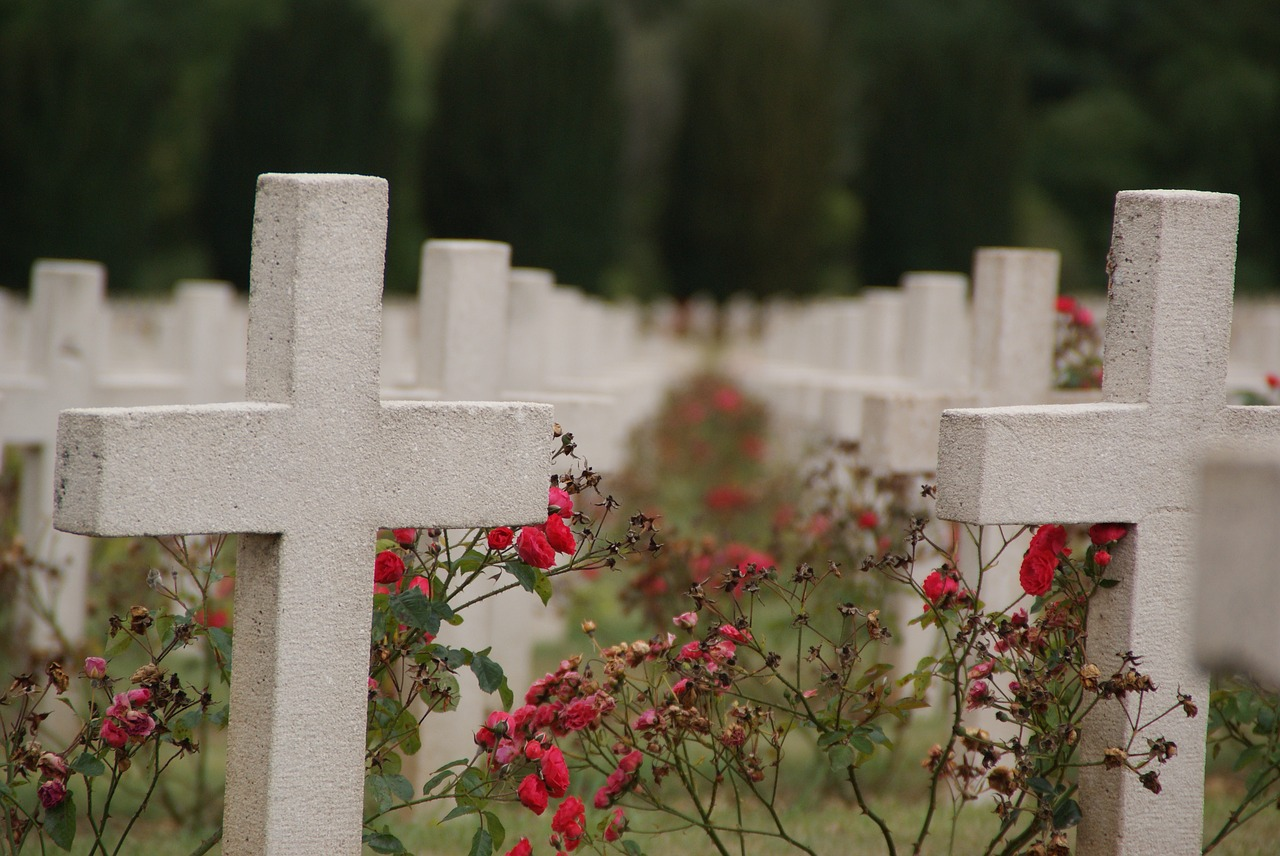 verdun war graves war free photo