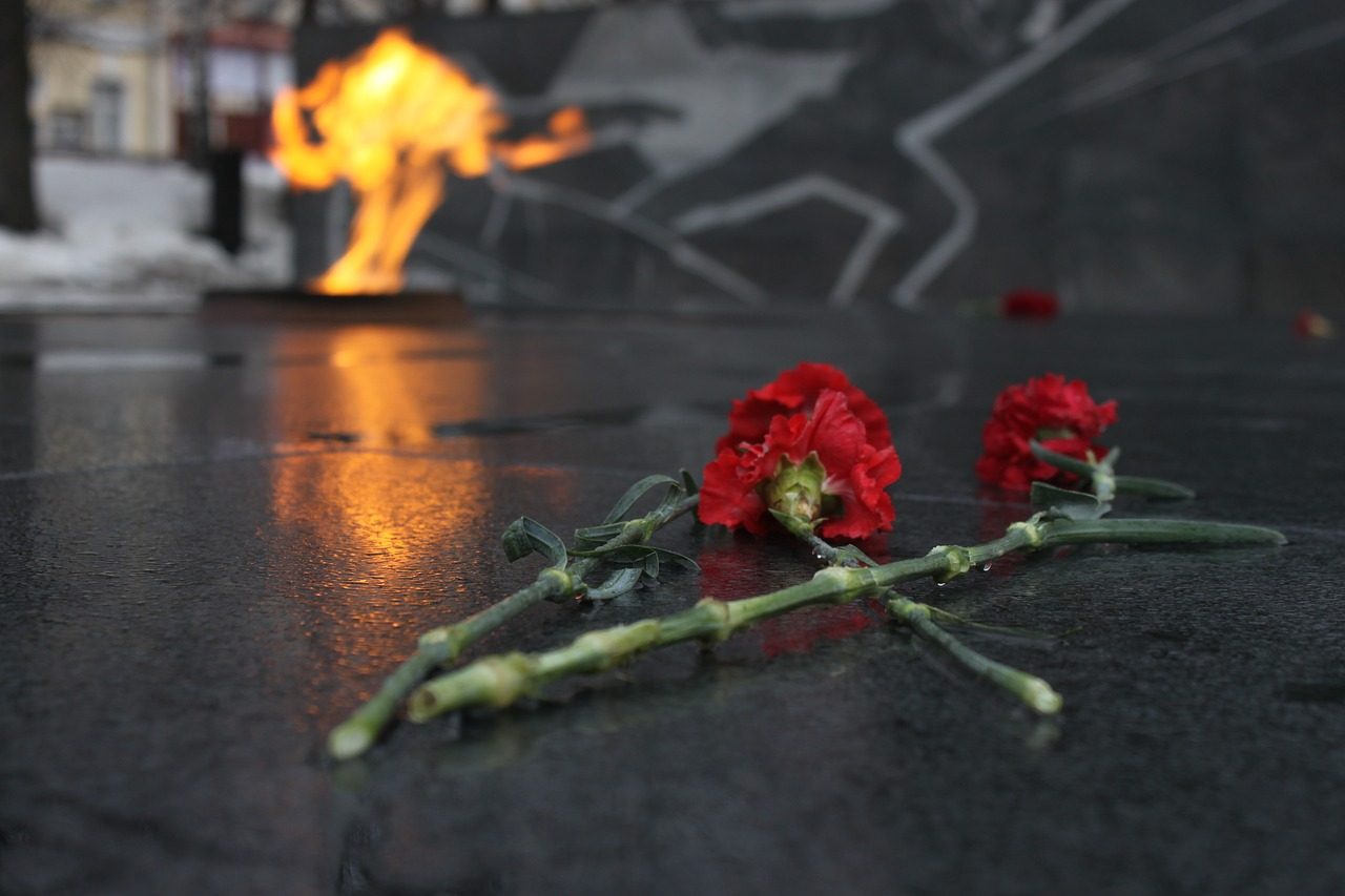 victory day,may 9,the eternal flame,carnation,red carnation,nizhniy novgorod,free pictures, free photos, free images, royalty free, free illustrations, public domain