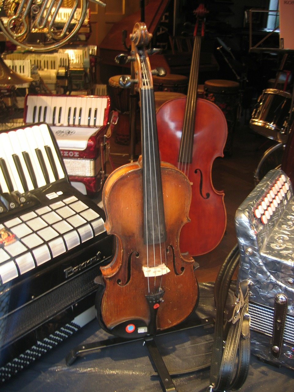 violin accordion sale free photo