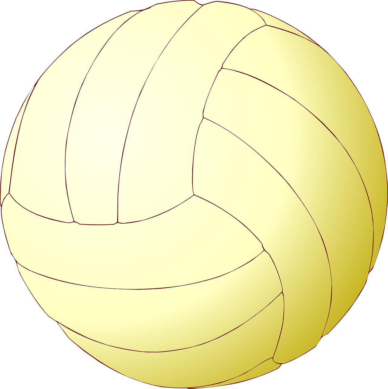 volleyball ball volley free photo