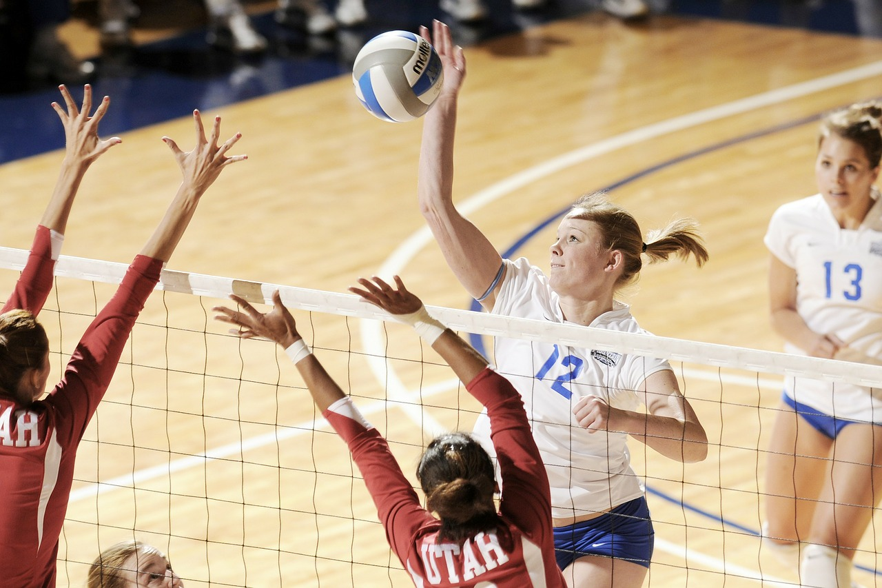volleyball women's sports free photo