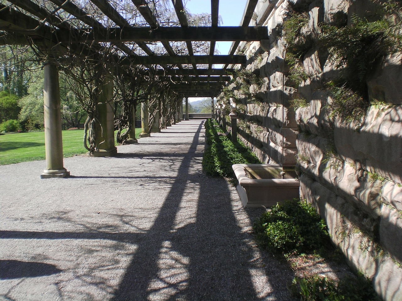 walkway path outdoors free photo