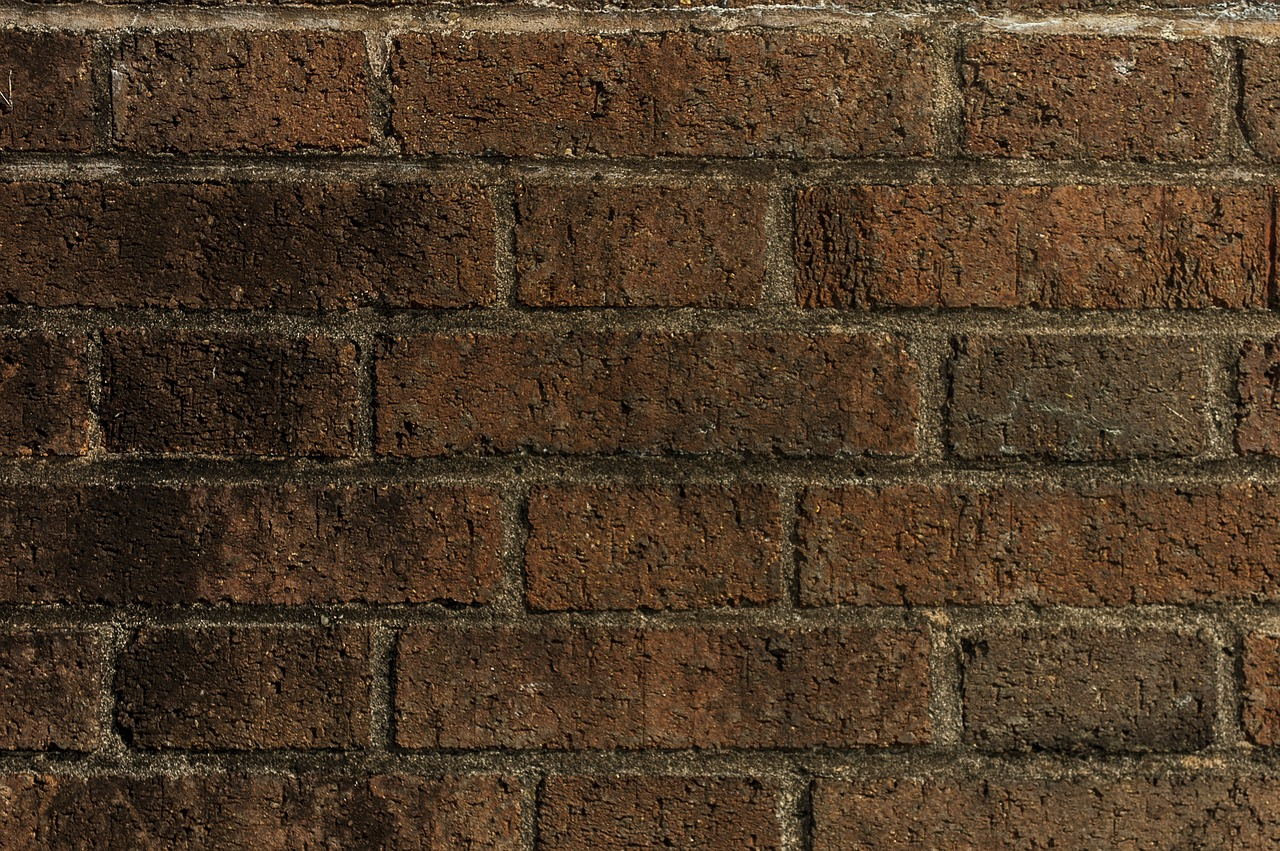 wall lake dusia brick wall free photo