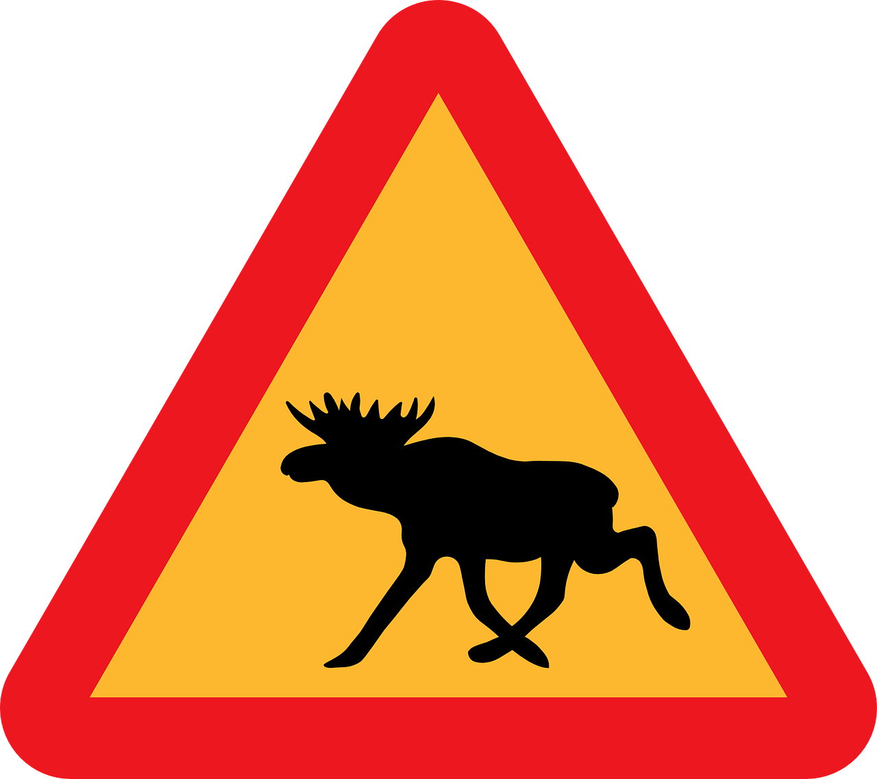 warning moose animal free photo
