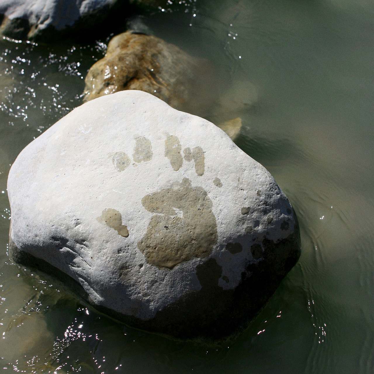 water rock footprint free photo