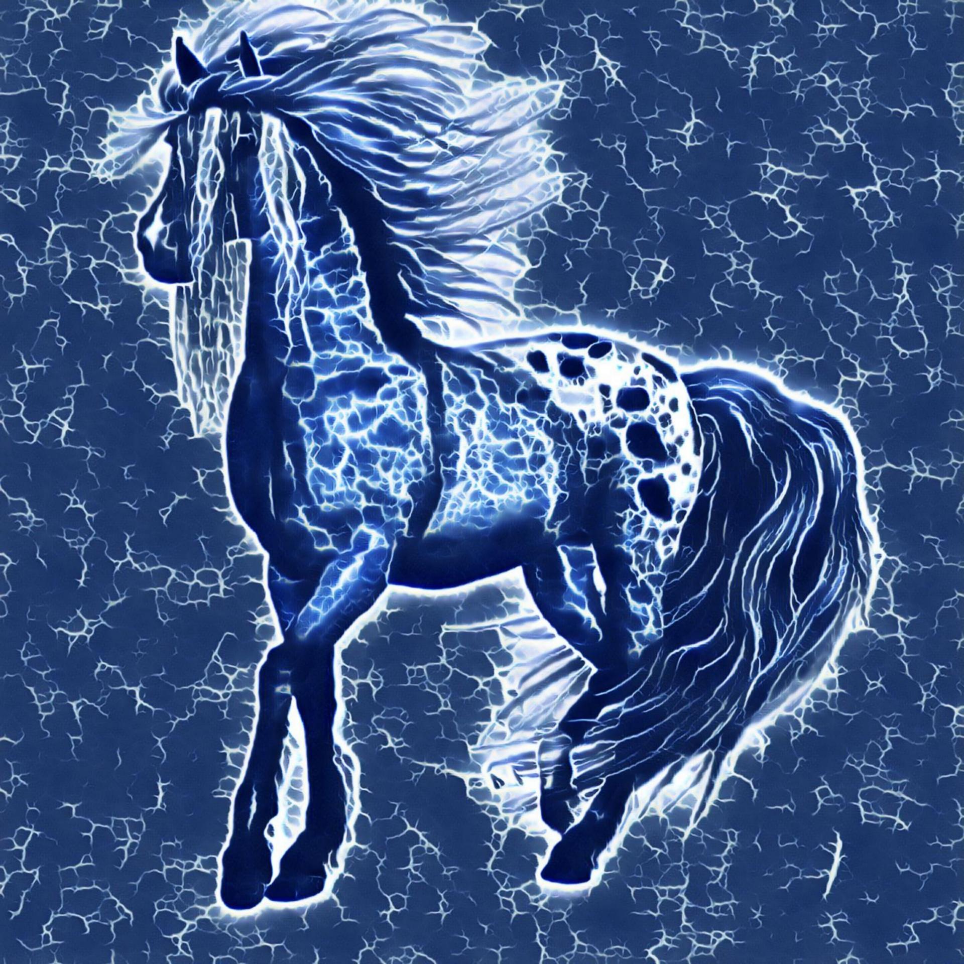 Fantasy Water Horse Art Abstract Free Image From Needpix Com