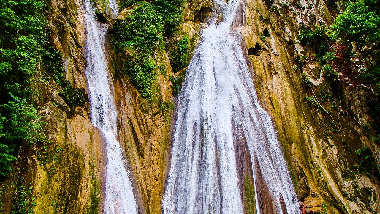 Waterfall,mussorie,nature,trees,water - free image from needpix.com