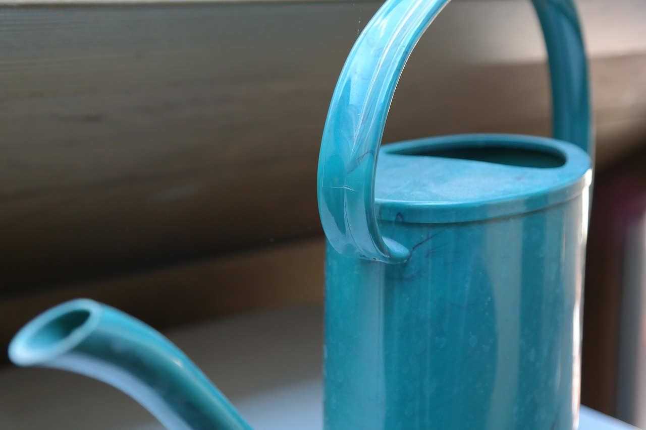 watering can casting plastic free photo